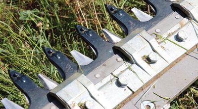 Immagine di Falciatrice dente - lama BFS 240 H