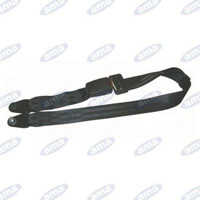 Immagine di Cintura di sicurezza statica