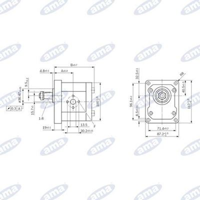 Immagine di Pompa Gruppo 2 BOSCH Sinistra serie AZPW da 11 cc - AMA