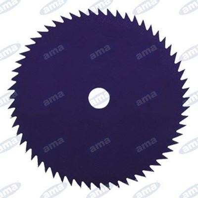 Immagine di Disco a 60  denti in acciaio per tronchetti 255mm - AMA
