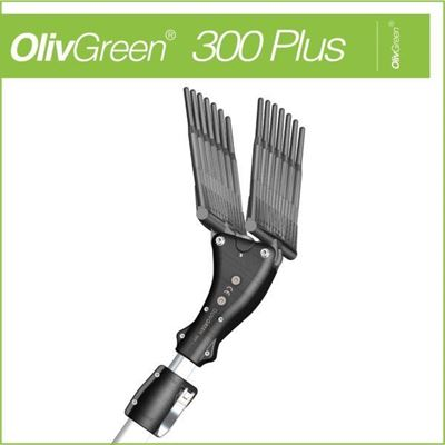 Immagine di OlivGreen 300 PLUS - MINELLI