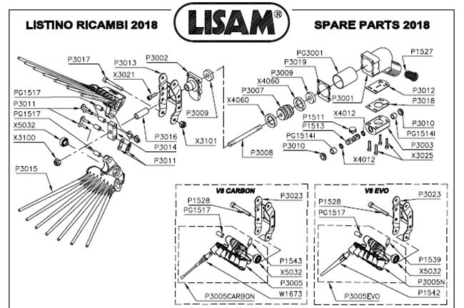 Immagine di RICAMBI V8 EVO - LISAM