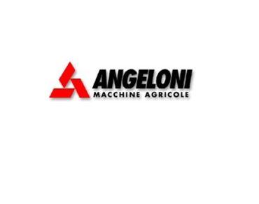 Immagine per il produttore ANGELONI
